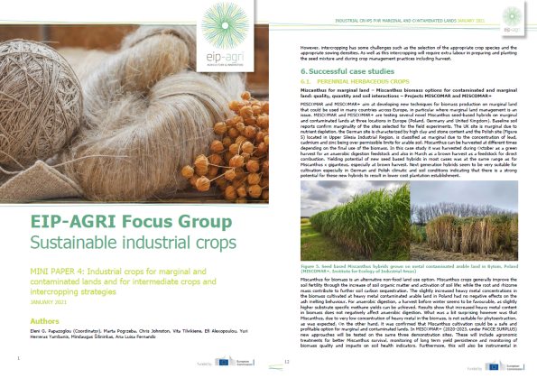 EIP-AGRI MINI PAPER 4: Industrial crops for marginal and contaminated lands and for intermediate crops and intercropping strategies